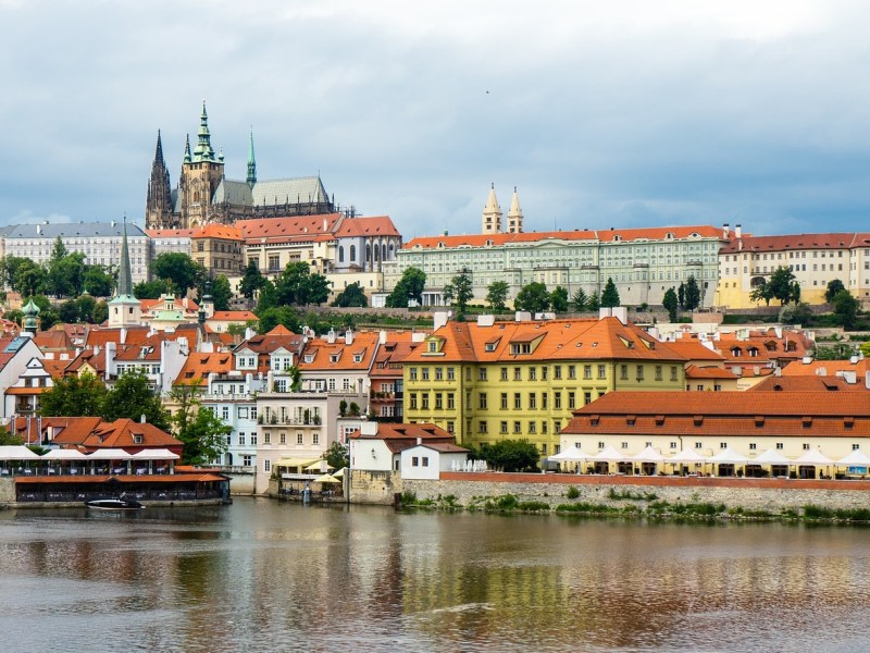 Study shows more people favoring a plant-based diet in The Czech Republic