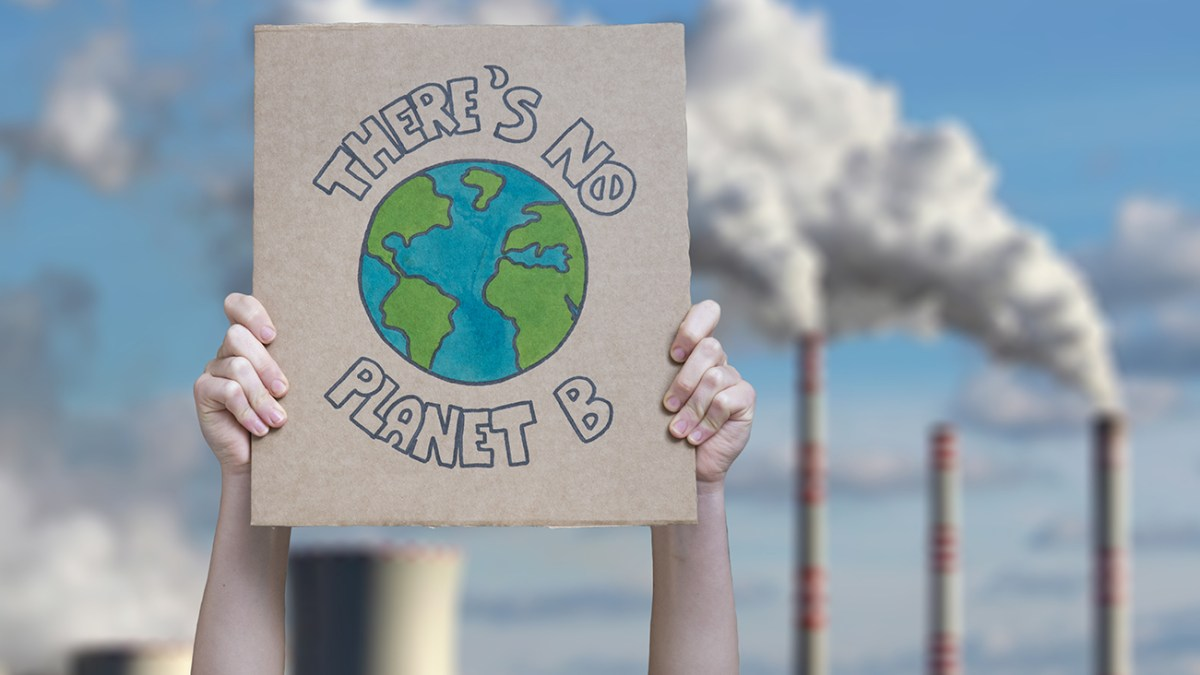 Why The New UN Poll On Attitudes To Climate Change Is A Huge Win For The Plant-Based Movement