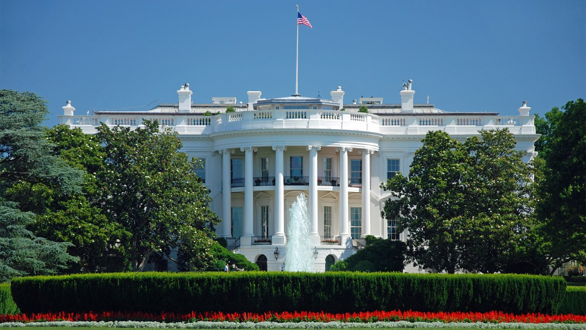 Doctors Urge White House To Stop 'Detrimental' Impact Of Animal Agriculture