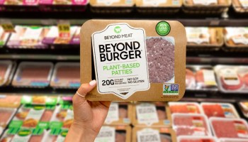 Investment In Alternative Proteins Reached Record-Breaking $3.1 Billion In 2020, Shows New Data