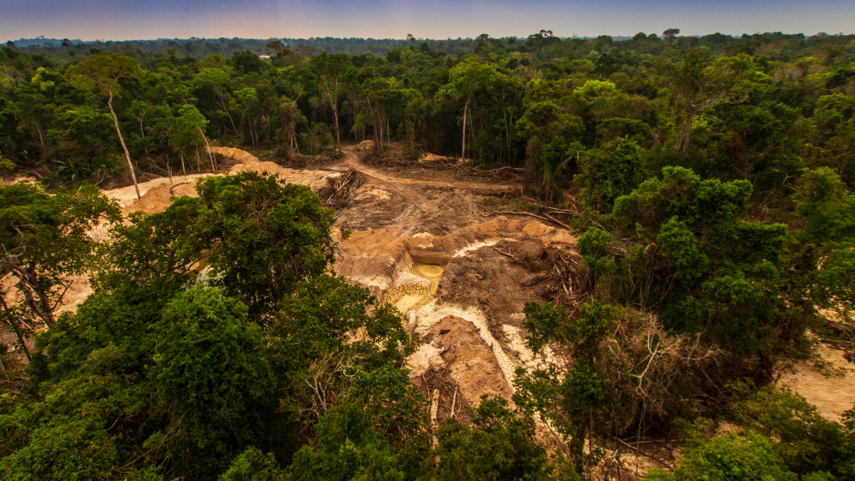 Deforestation in the Amazon Rainforest, which has been linked to alter the landscape's climate, and global warming