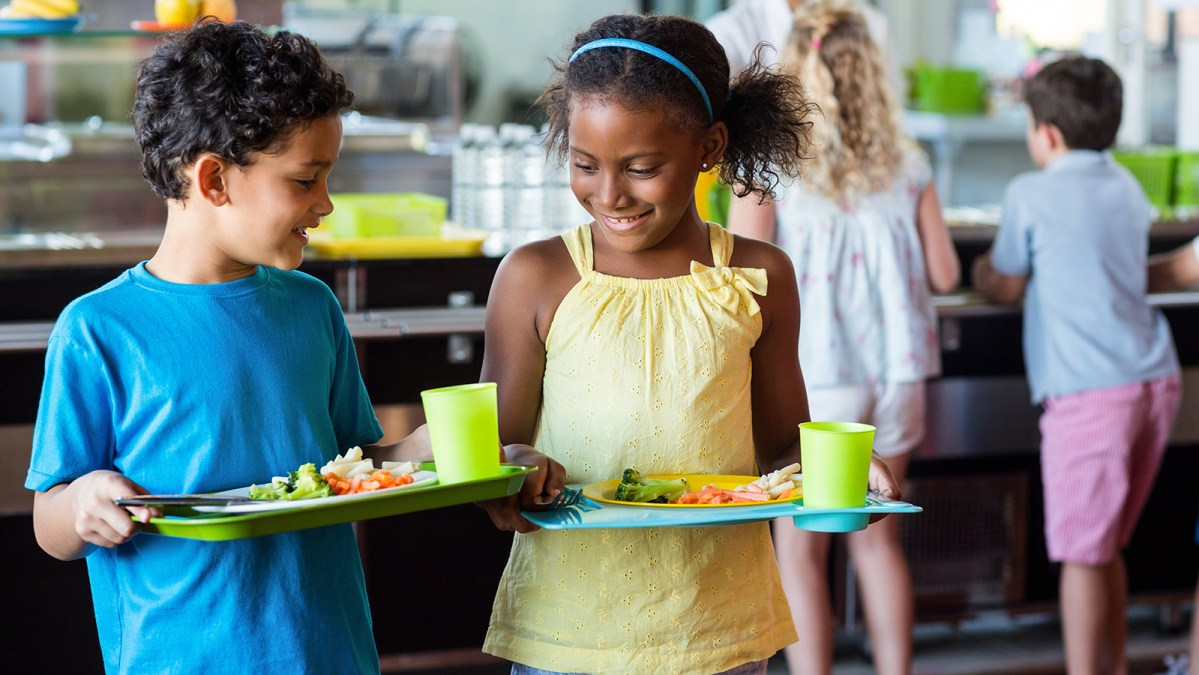 Politicians Accused Of 'Eco Fascism' For Implementing Meat-Free School Meals