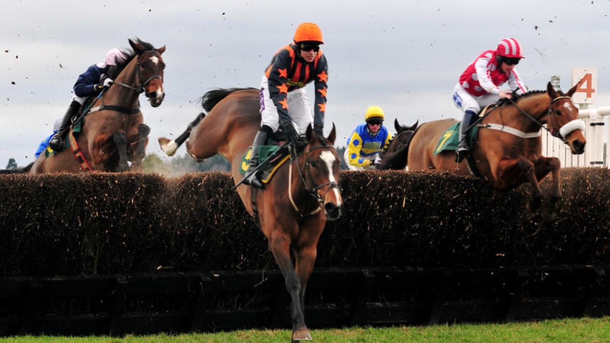Grand National 2021 returns this year with no spectators in line with COVID-19 regulations. But it's faced calls it be banned
