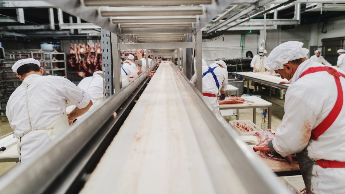 Germany Sees Meat Production Drop As Plant-Based Alternatives Soar