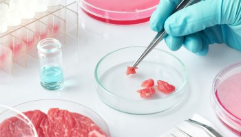 Nestlé is debuting in cell-cultured meat