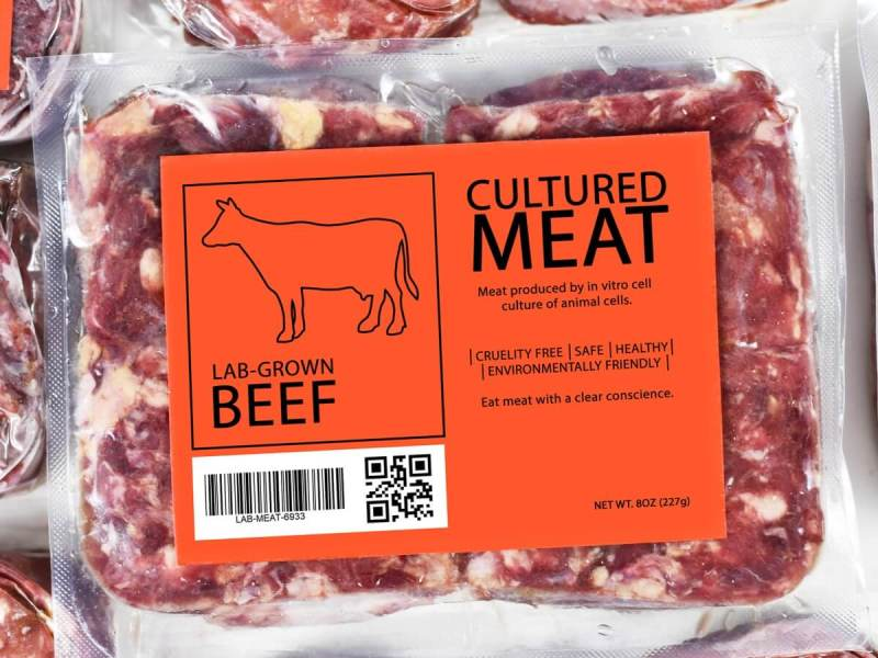 lab grown slaughter free meat