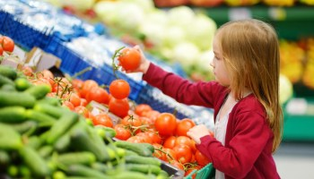 Netherlands to implement snack ban and urges residents to go plant-based