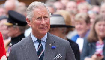 Prince Charles talks Greta Thunberg and activism, ending industrial farming, and reducing his meat intake