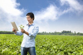 Tablet in field examining crops