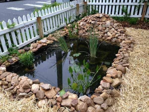How Build Garden Pond Cheap