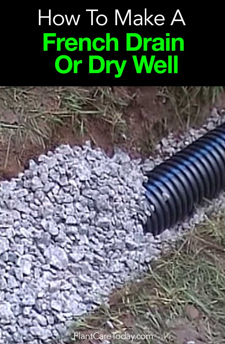how to install a french drain or dry well