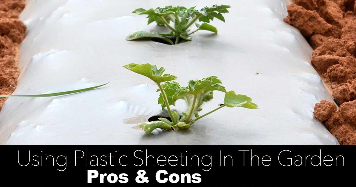 Garden Plastic Sheeting