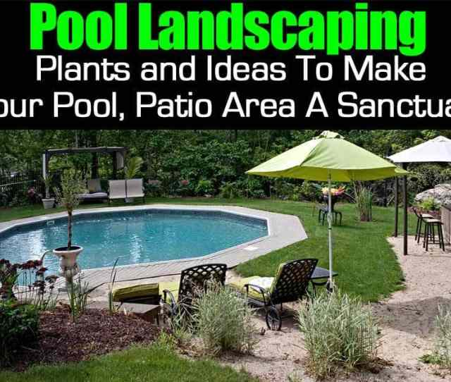 Pool Landscape Plants Dress Up In Ground And Above Ground Pools Backyard