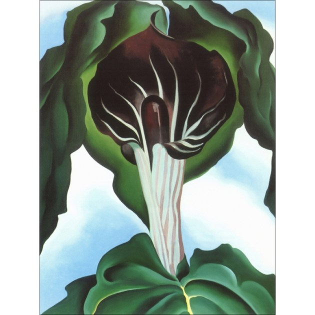 jackinthepulpit no111