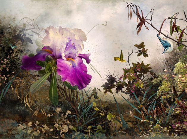 botanical artist photographer