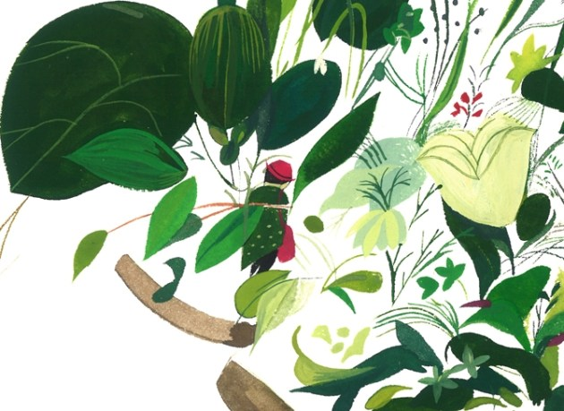 jon Lau plant illustration