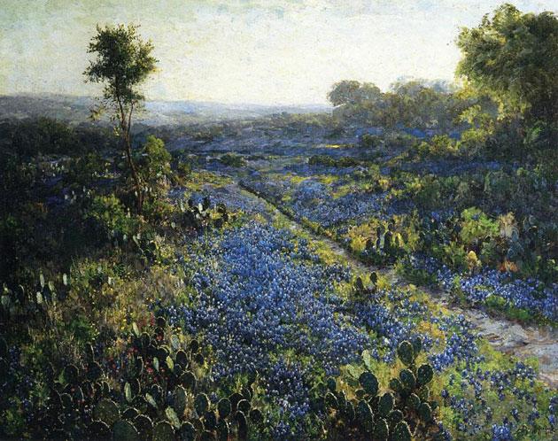 blue plant landscape