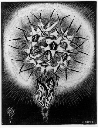 Escher Prickly Flower