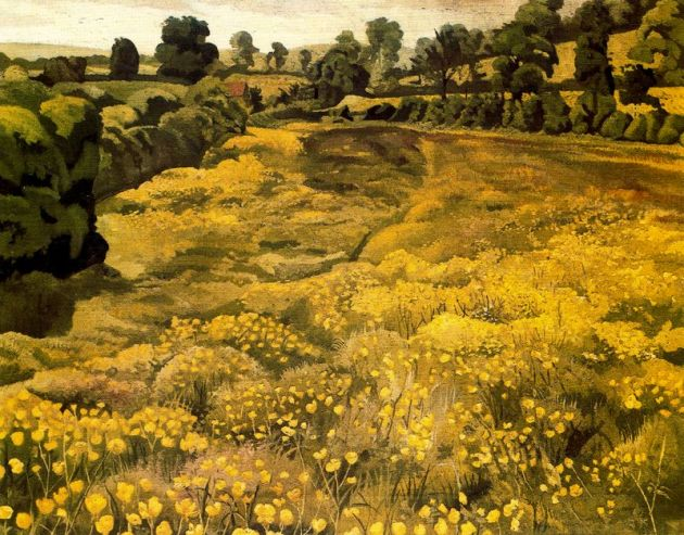 buttercups in meadow by Stanley Spencer