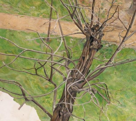 20 tree paintings by male artists