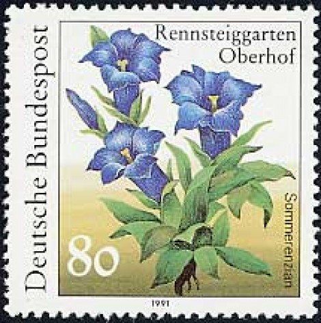 Stamp collecting by Plant Family – how exciting!
