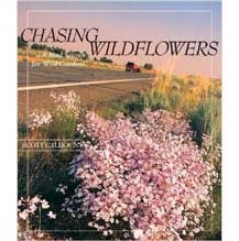 Chasing Wildflowers: A Mad Search for Wild Gardens by Scott Calhoun