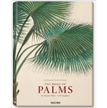 Martius, Book of Palms by H. Walter Lack