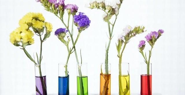devenir-aromatherapeute