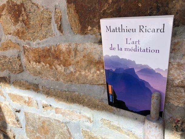 art-meditation-ricard-bouddhiste