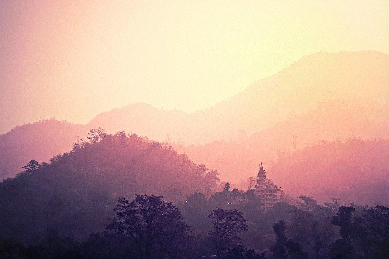 Huile essentielle de Nard de l'himalaya: en direct de la demeure des dieux
