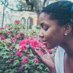 protocole-reeducation-olfactive