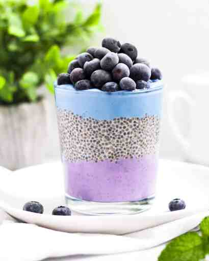 This is a picture of a cup filled with a layer of purple acai plant-based yogurt, chia pudding, blue spirulina plant-based yogurt, topped with blueberries.