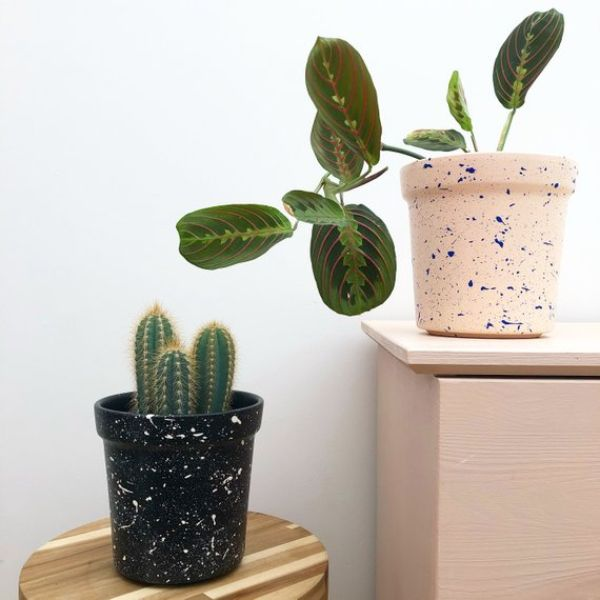 Colourful Plant Pot Cute Plant Pot Small Plant Pot Black Plant Pot Painted Plant Pot Cacti Pot Outdoor Gardening Home Living