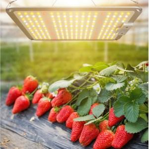 Samsung Quantum board – LED vækstlys 110Watt dæmp