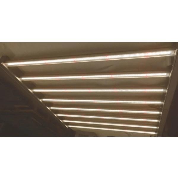 Grolys lampe med røde lysdioder