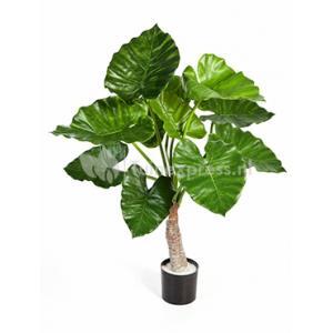 Kunstplant Alocasia calidora S