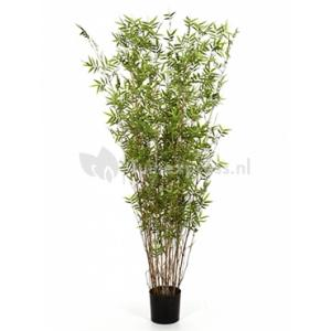 Kunstplant Bamboe oriental M