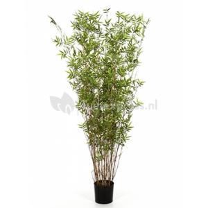 Kunstplant Bamboe oriental S