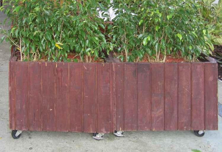 Problems with carpenter built wood planters