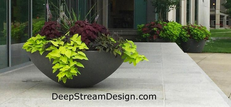 Click for more info on DeepStream Zena Saucer Commercial Fiberglass and GFRC Concrete Planter