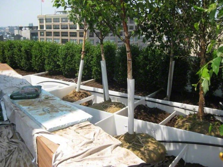 A large installation of Custom Welded Waterproof Planter Liners on a roof top are compartmentalized to isolate drainage problems