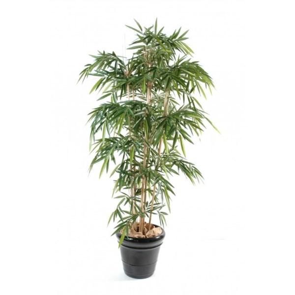 Bambou 120 uv résistant