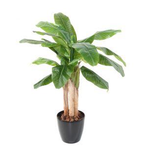 Bananier 3T semi-artificiel 130 cm