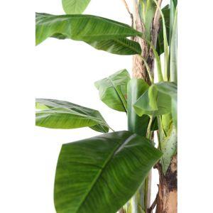 Bananier 3T semi-artificiel zoom
