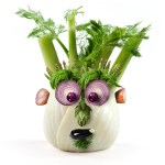 Fennel Face