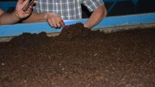 Plant Life 360 - HumuX - Vermicompost