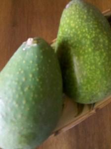 Avocados antioxidation