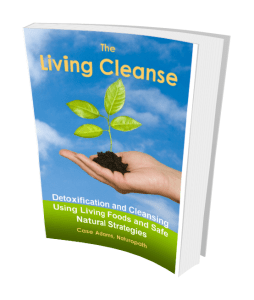 The Living Cleanse by Case Adams