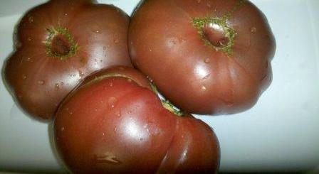 lycopene and tomatoes