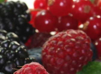 tooth decay and berries